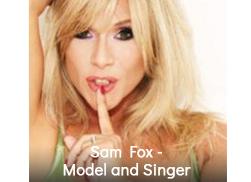 Sam-Fox